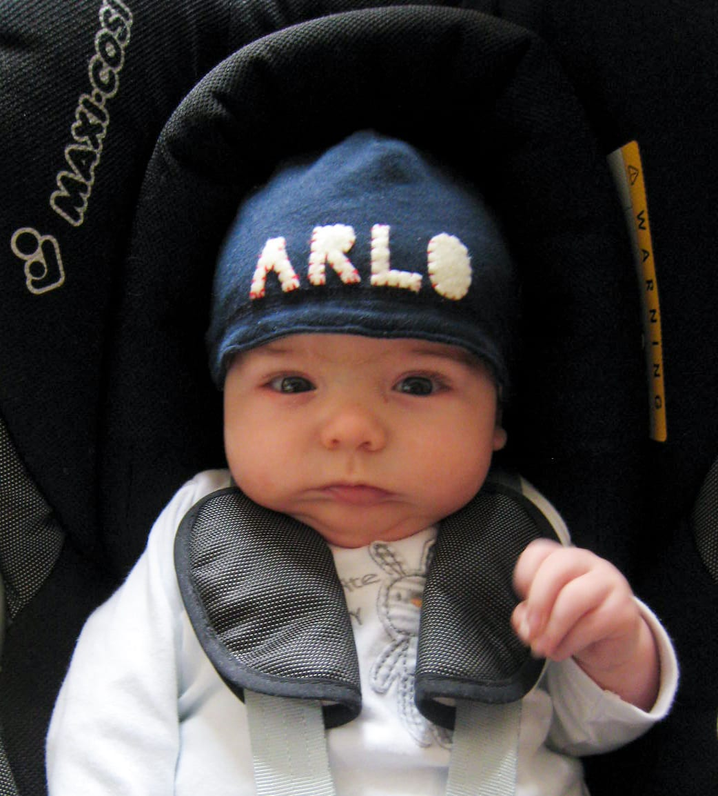 Arlo - Boy's name meaning, origin, and popularity | BabyCenter